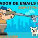 SOFTWARE VALIDADOR E SEPARADOR  DE EMAILS TXT PROFISSIONAL