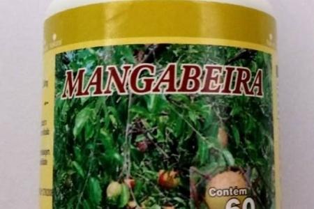 MANGABEIRA 60 CAPS DE 500 MG - R$24,90 + frete