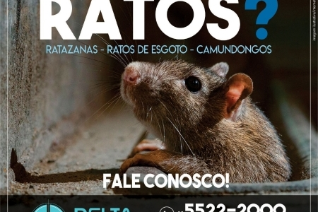 DeltaPrag dedetizadora de ratos em São Paulo